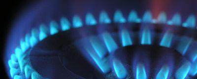 Llamas azules de una cocina de gas