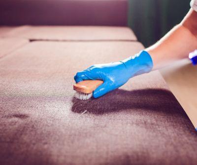 Polstermöbel reinigen leicht gemacht
