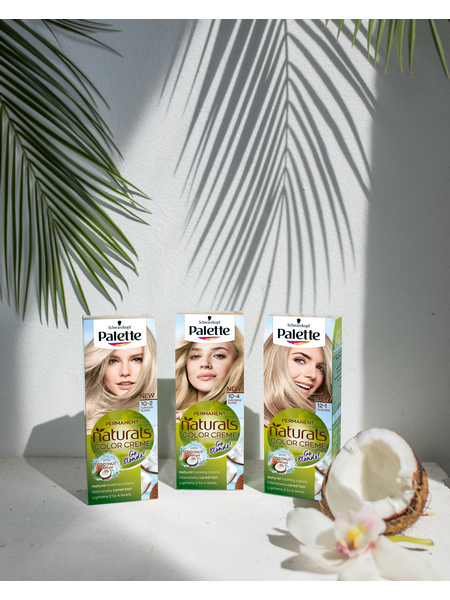 Three boxes of Palette Naturals hair color under palm leaves