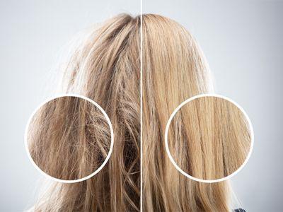 Auf der linken Seite sieht man blondes, strapaziertes Haar und auf der rechten Seite gesundes blondes Haar