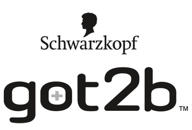 Logo mladé značky got2b.
