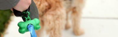 Tipps zum Entfernen von Hundekot