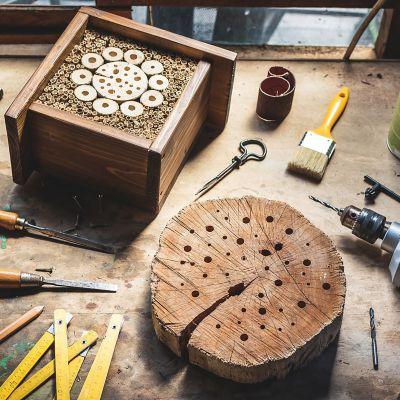 Bau eines Insektenhotels aus einem Baumstamm