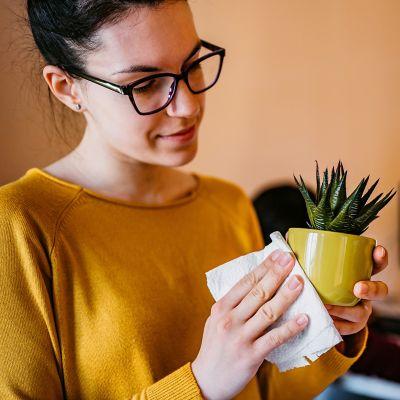 Frau reinigt einen kleinen Blumentopf