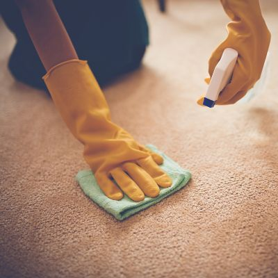 Hands with cleaning gloves cleaning a carpet