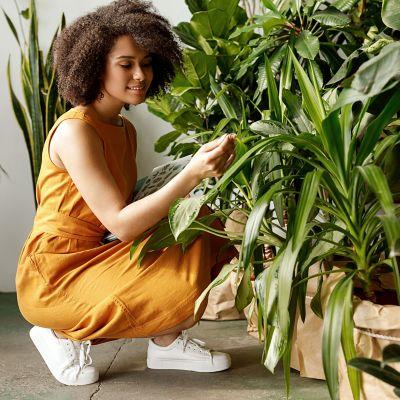 Mädchen in gelbem Kleid betrachtet Topfpflanzen