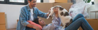Ein Paar spielt mit einer Katze