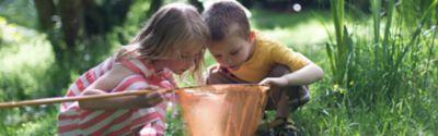 Kinder halten einen Kescher