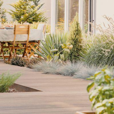 Eine Frau liegt auf einer Terrasse, neben ihr stehen Pflanzen