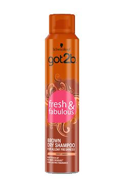 Thumbnail – Brown Dry Shampoo