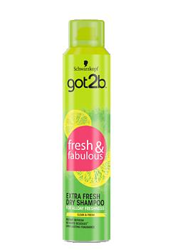 Thumbnail – Extra Fresh Dry Shampoo