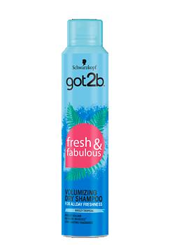 Thumbnail – Volumizing Dry Shampoo