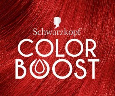 Color Boost logo