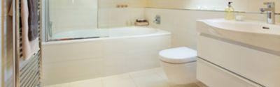 Reinigung deiner Toilette - alles, was du dazu wissen musst