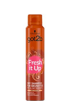 Thumbnail – Dry Shampoo Dark Brown