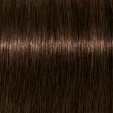 tbh – true beautiful honest Hair Colour Cool 5-49