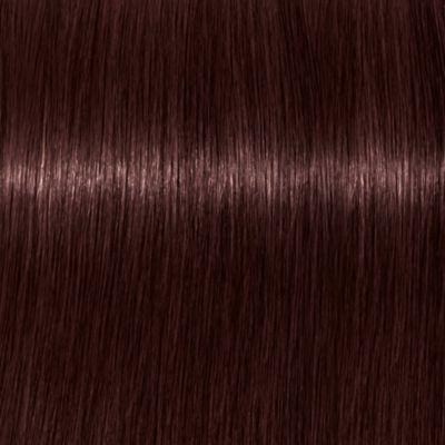 tbh – true beautiful honest Hair Colour Warm 4-84