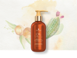 Oil Ultime At-Home Oil-in-Conditioner