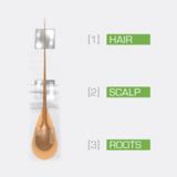 [3D]MEN hair root, scalp and length technology