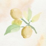 Oil Ultime Marula Oil Watercolour Painting