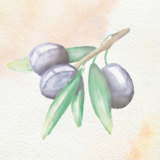 Oil Ultime Olive Oil Watercolour Painting