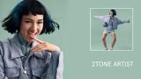 2Tone Artist Tutorial Video Preview