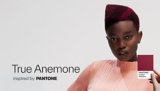 True Anemone tutorial