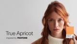 True Apricot tutorial