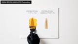 IGORA ROYAL Absolutes Technology Video Preview