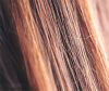 Close up of brown hair