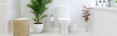 Kleiner Raum, große Wirkung: Tipps fürs Gäste-WC