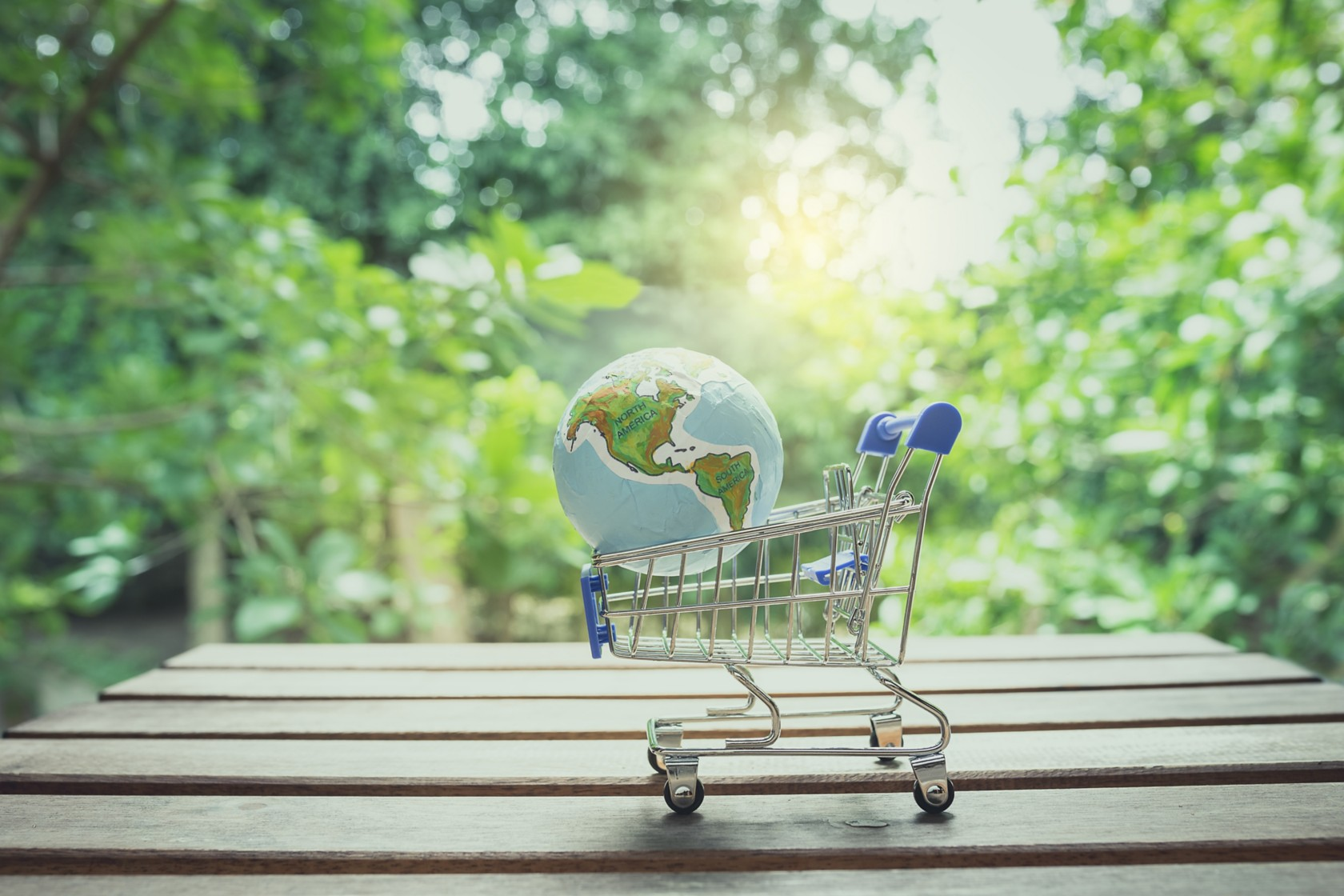 Klimafreundlich einkaufen, Einkaufswagen mit Globus