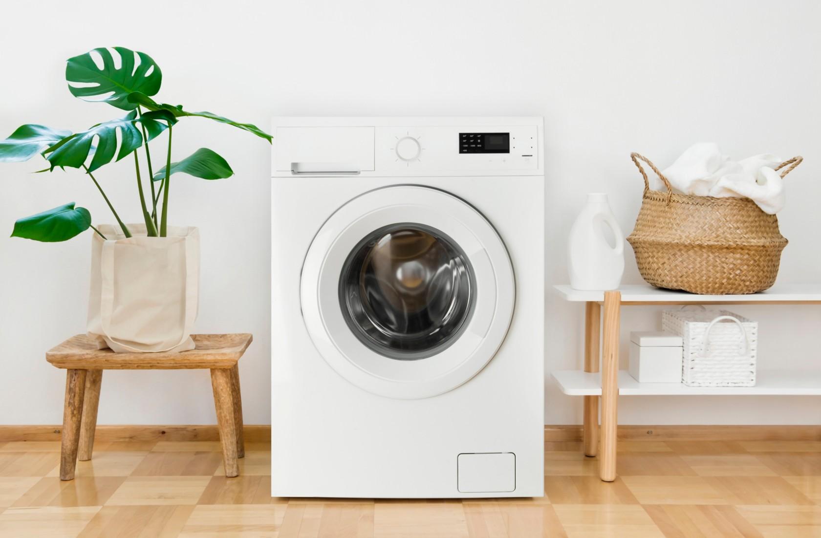 Rucksack in Waschmaschine, leere Waschmaschine mit Pflanze und Körbchen