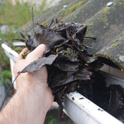Frühjahrsputz für deine Terrasse und Regenrinne