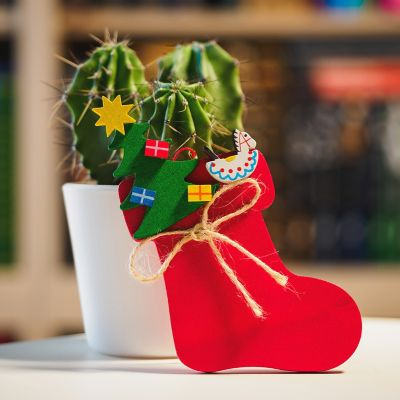 get your christmas cactus to bloom