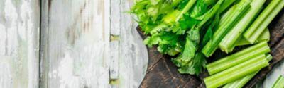 freezing celery