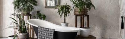 Rośliny do łazienki - które rośliny doniczkowe mogą poprawić jakość powietrza?