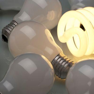 Glühbirne richtig entsorgen