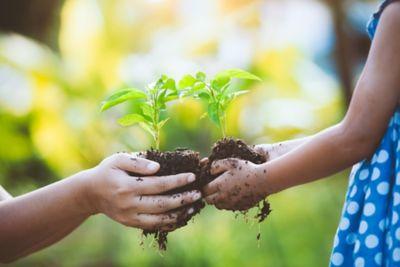 Environmentally friendly cost-cutting