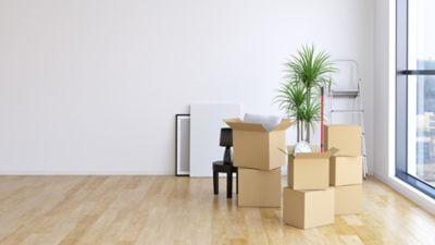 Wohnungsauflösung, leere Wohnung mit Umzugsdosen