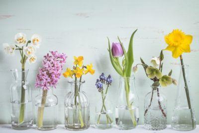 Re-using glass bottles for flowers.