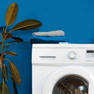Fuchsschlau waschen mit diesen Hacks