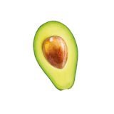 avocado-cut