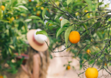 4 fruity ingredients beneficial to you