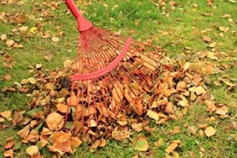Come riparare un rastrello da giardino?