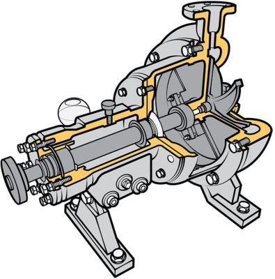 cutaway of a centrifugal pump