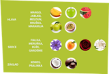 fragrances-our-ingredients-5-cz