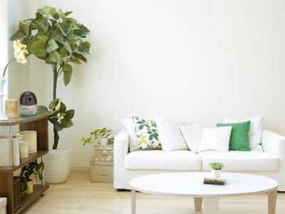Pronađite koji je najbolji nivo vlage za vaš dom