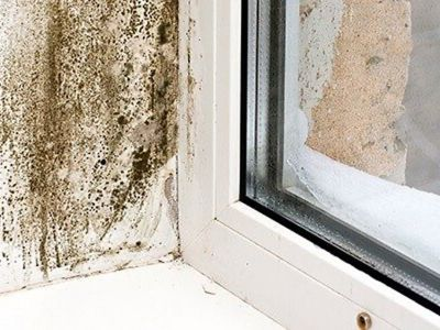 3 possibili danni causati dell'eccesso di umidità in casa