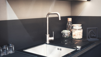 Natürliche Hausmittel gegen Insekten in deiner Küche, eine Wanze auf dem Wasserhahn